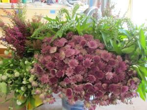 Processing flowers begins…..